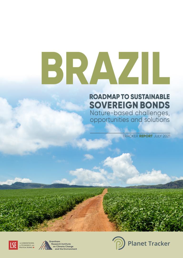 Brazil Report Img
